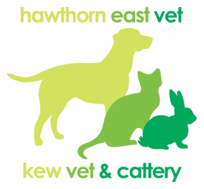 Hawthorn East and Kew Vet & Cattery logo